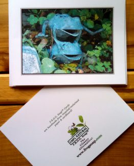 leaping frogs card for catalog